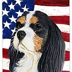 cocker with flag