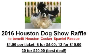 dog show raffle picture